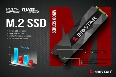 Biostar M500 M2 2280 PCI-Express NVMe SSD
